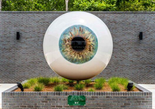 Shreveport Eye Specialists - Contact Lens